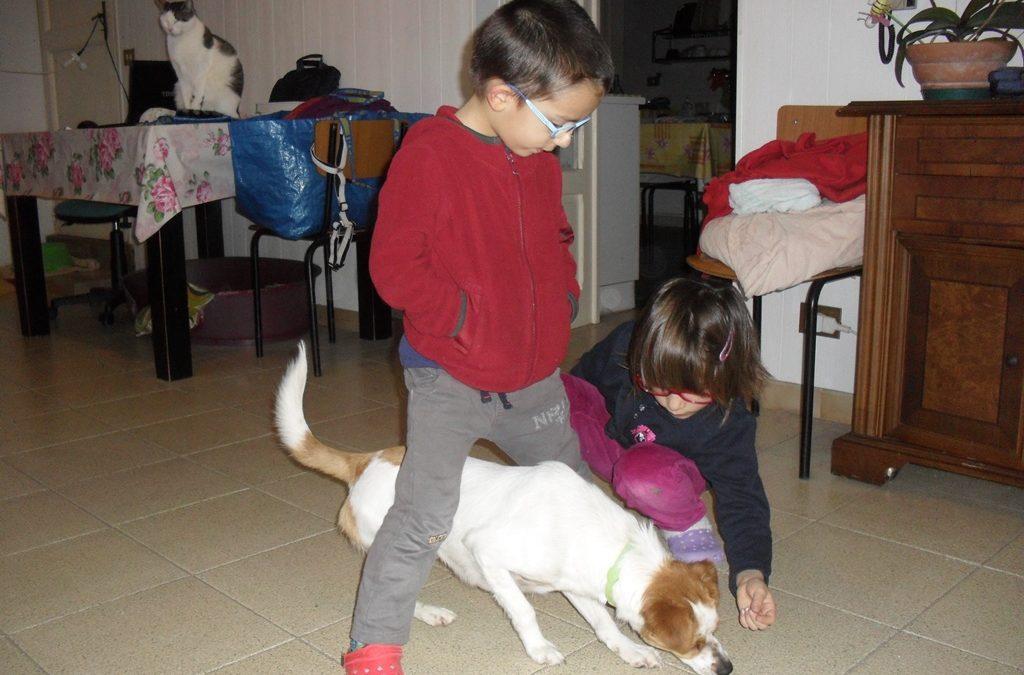 Il movimento nella relazione bambino-cane. Quali attività possiamo fare?